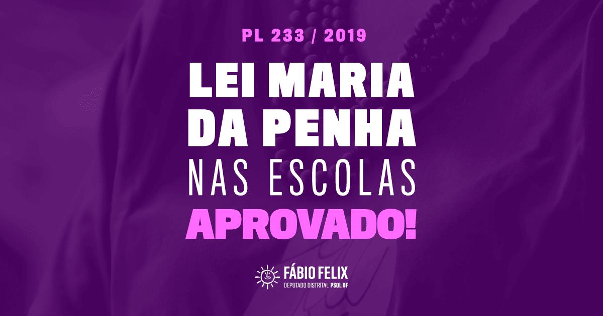 Fábio aprova mais uma lei: Escolas públicas do DF deverão ensinar Lei Maria da Penha