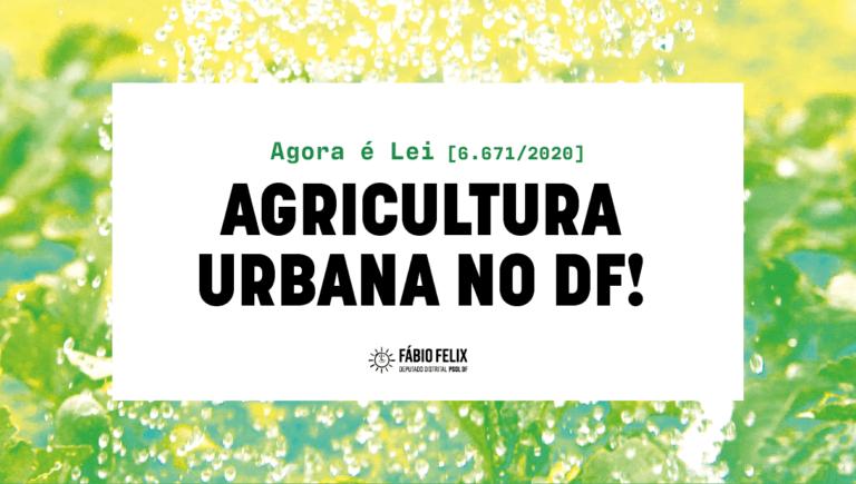 DF terá áreas para agricultura urbana