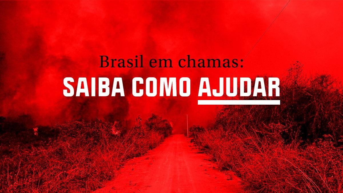 Brasil em chamas: saiba como ajudar