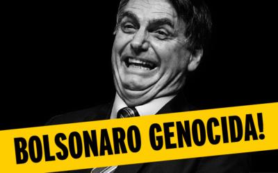 Pandemia no Brasil e a gestão Bolsonaro