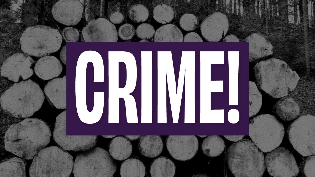 Deputados pedem investigação de extração ilegal de madeira na FLONA